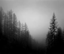 black-amp-white-black-and-white-dark-darkness-favim-com-417159