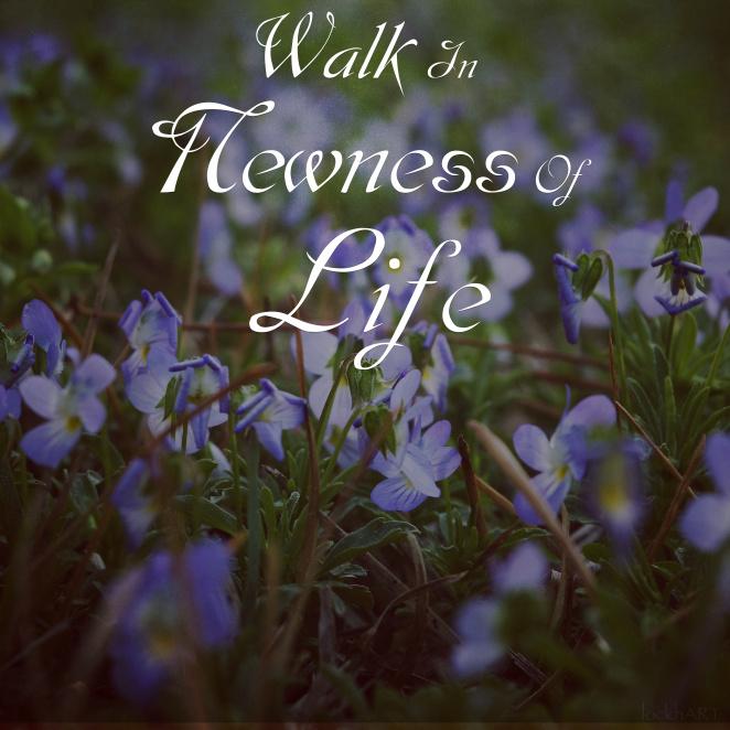 walk-in-new-life