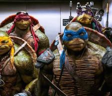 TEEN TURTLES