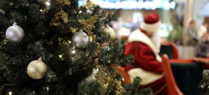 X mas tree Christmas