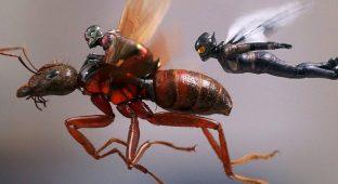 Movie ant fight