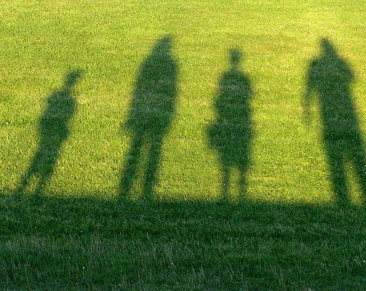 F Family