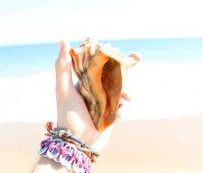 Beach mike