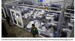 Border p cage